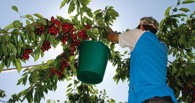 Lors des dernières questions au gouvernement, le ministre du Travail, François Rebsamen, a abordé la question des travailleurs saisonniers.