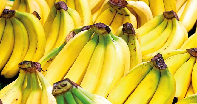 L'AIM souhaite voir la consommation française de banane atteindre au moins le niveau moyen annuel des Européens, soit 11,5 kg par personne. Photo : Fotolia