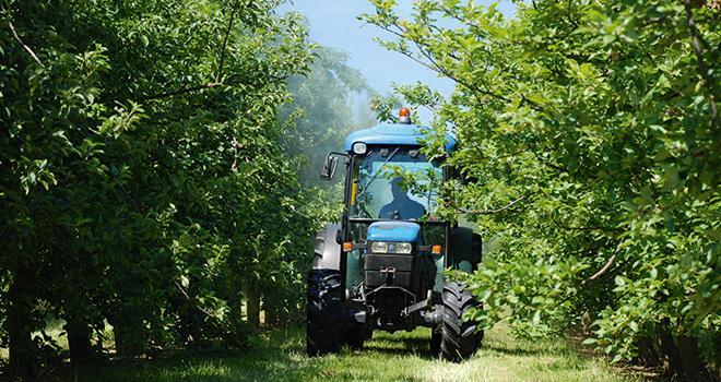 """""""Se focaliser sur la réduction des quantités de produits phytosanitaires consommés ne nous semble pas répondre à la question qui nous préoccupe tous: comment réduire les risques pour la santé humaine et l'environnement?"""", précisent Légumes de France, la FNPHP et Felcoop dans une lettre ouverte une ministre."""