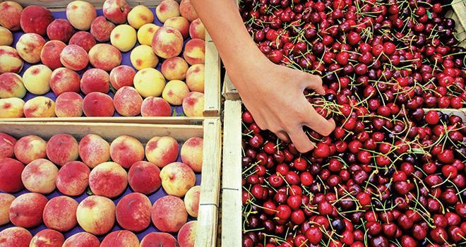 En 2018, les chiffres d'affaires à la production des fruits d'été connaissent une évolution contrastée, dans un contexte de baisse des récoltes et de remontée des cours. Photo : Fotolia