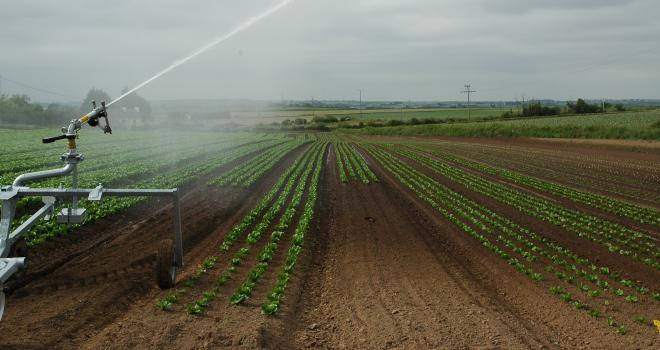 Sur les 53 départements qui pourraient connaître des épisodes de sécheresse estivale, onze sont exposés à un risque « très probable ». CP : D. Bodiou/Pixel6TM