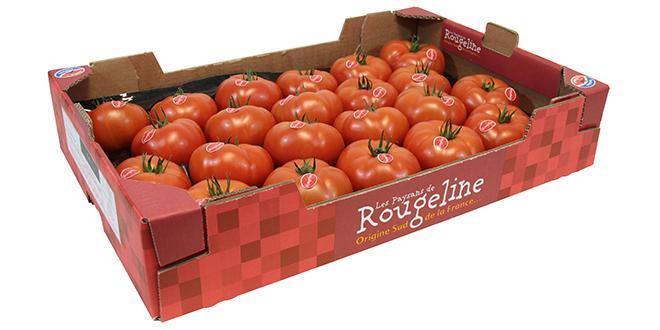 Ce contrat porte sur 200 tonnes de tomates charnues achetées à Rougeline, par an à prix fixe par Florette Food Service.