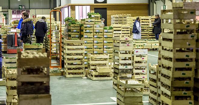 Le marché international de Rungis a commencé à promouvoir en 2016 les produits franciliens à travers le carreau des producteurs. Photo : DR