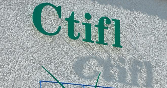 A l'occasion de leurs conseils d'administration le 19 mars dernier, la FNPF et Légumes de France se sont réunis pour évoquer l'avenir du CTIFL. Prochaine rencontre prévue le 9 avril.