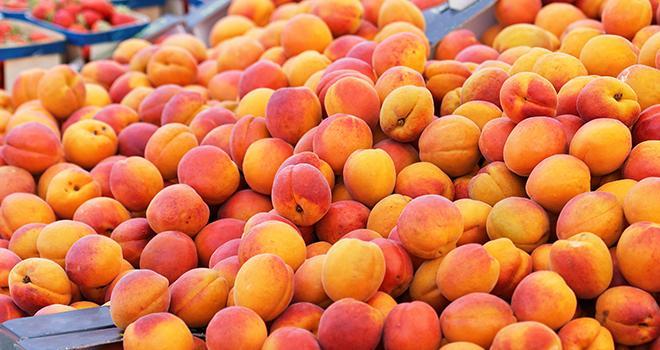 Cette saison, l'AOP Pêches et Abricots de France renforce sa vigilance face aux risques de francisation de ses produits. Photo Pictures news/Adobe stock