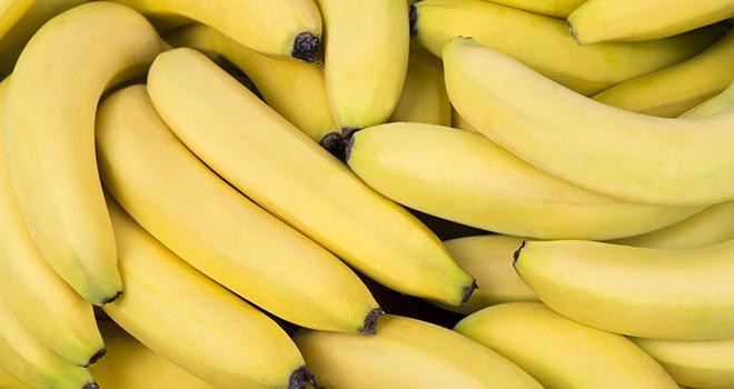 L'Apeb dénonce l'ouverture de la Commission européenne à une possible renégociation à la baisse des tarifs douaniers sur les importations de bananes en provenance de pays tiers. Photo : Misko Kordic/Adobe stock