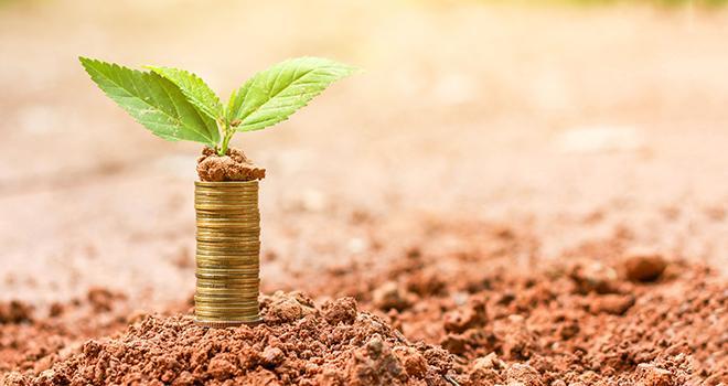 Le projet de loi de finances rectificatives, préparé au vu des conséquences du coronavirus, ouvre des aides aux agriculteurs financièrement touchés. Photo : Thepphanom/Adobe stock