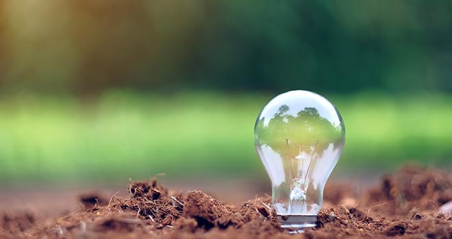 Testé en 2020 sur six entreprises, le programme d'accélération des start-up de naturalité sera déployé fortement dès 2021. Photo : Jo Panuwat D/Adobe stock