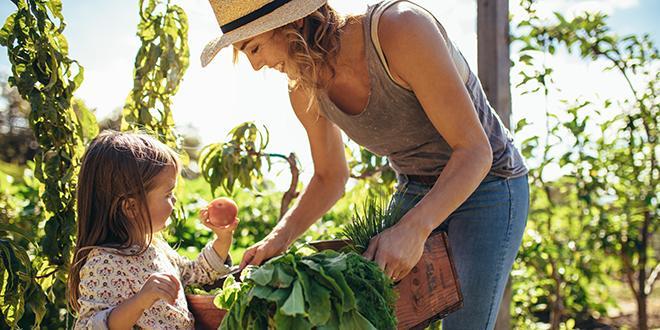 La Fnab et la Confédération paysanne demandent des solutions de garde pour les enfants d'agriculteurs. Photo : Jacob Lund/ Adobe Stock