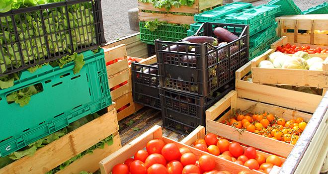 Solaal lance une application pour faciliter les dons agricoles. Photo : illustrez-vous/Adobe stock