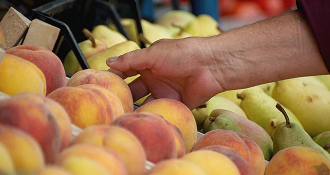 La Commission européenne vient de publier son rapport sur les perspectives agricoles pour 2019-2030, notamment pour la production de pommes, de pêches et de nectarines. Photo : Adobe Stock Nellas