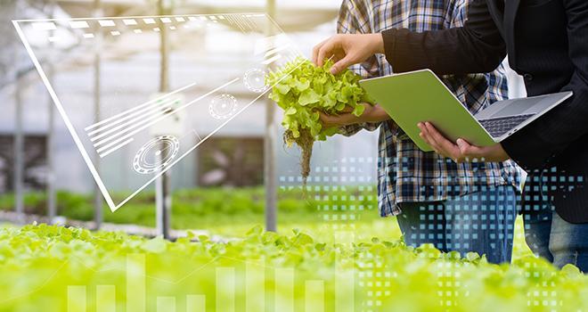 L'Inrae a pour ambition de devenir un leader mondial dans les sciences agricoles, de l'animal, du végétal et de l'alimentation, ainsi qu'un acteur majeur des sciences de l'environnement. Photo : Ngad/ Adobe Stock