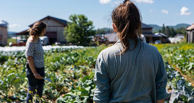 Grâce au TODE, les employeurs agricoles qui souhaitent embaucher des travailleurs saisonniers peuvent bénéficier de l'exonération de cotisations patronales de Sécurité sociale sur les bas salaires. Photo : Valmedia/Adobe Stock