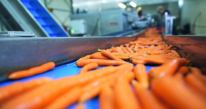 Toute la chaîne d'approvisionnement alimentaire doit être assurée pendant cette période de confinement liée au Covid-19. Photo : littlewolf1989/Adobe stock
