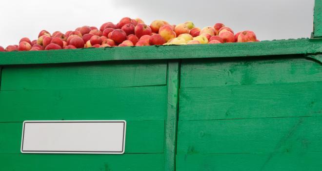 En dix ans, les importations de fruits ont augmenté de 67 %, et celles de légumes de 50 %, selon Christiane Lambert. CP : JoyNik/Adobe Stock