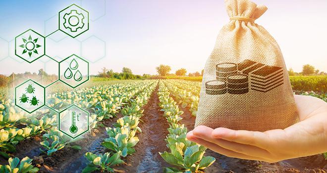 À travers le label AgriO, son consortium soutient l'innovation des start-up agri/agro. Photo : Андрей Яланский/Adobe stock