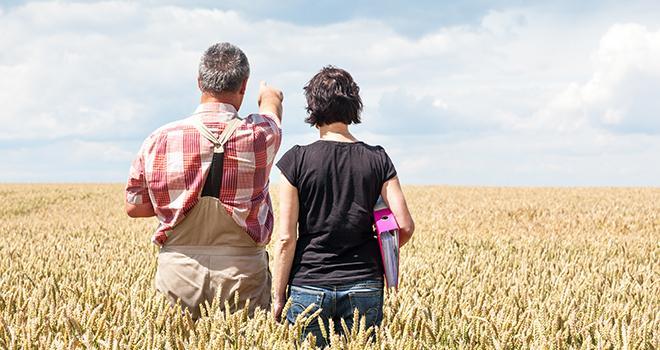 Les contributions viendront nourrir le projet stratégique des chambres d'agriculture, dont le cadrage général sera finalisé à la fin du mois de novembre. Photo : Edler von Rabenstein/Adobe Stock