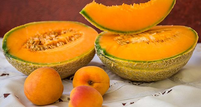 Lors des deux premiers mardis de medFEL, les prévisions de récolte en abricots et melons ont été présentées. Photo AliSta/Adobe stock