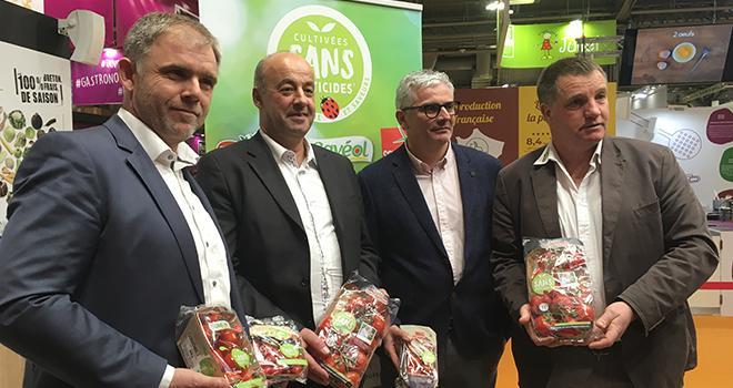 """Pierre-Yves Jestin (Savéol), Marc Kerangueven (Prince de Bretagne), Christophe Rousse ( Solarenn) et Gilbert Brouder (Prince de Bretagne) veulent développer leur logo commun de tomates """"cultivées dans pesticides"""". Photo : b.bosi."""
