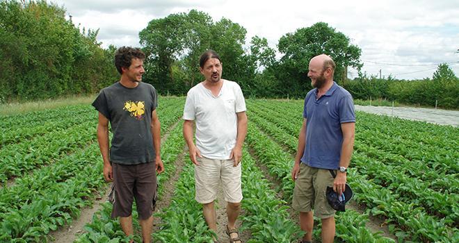 Baptiste Grilleau, Philippe Jaunet et Loïc de Barmon, trois agriculteurs bio, alertent sur la sécheresse qui sévit en Maine-et-Loire. Photo : M.D.G/Pixel6TM