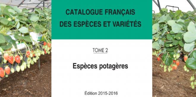 Comme chaque année, le Comité technique permanent de la sélection du Geves met à jour et publie le Catalogue des espèces potagères inscrites en France.