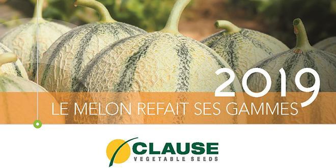 Dans son catalogue 2019, Clause propose 3 nouvelles variétés de melon, adaptées aux besoins actuels des producteurs. Photo : HM. Clause