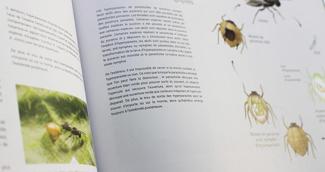 Grâce aux photos et illustrations, le guide permet de mieux identifier et mieux connaître les bioagresseurs. Photo : Koppert