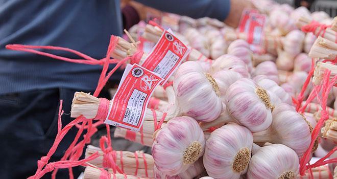 L'ail rose de Lautrec bénéficie du label Rouge depuis 1966.