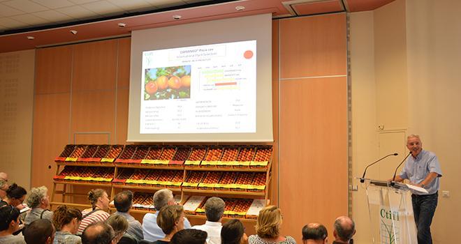 Présentation variétale abricot organisée le 30 août au centre CTIFL de Balandran. Photo : C.Even/Pixel Image