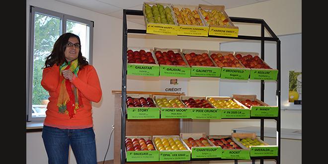 À l'occasion de la présentation pommes/poires à La Pugère, Emmanuelle Filleron a réaffirmé l'importance du réseau d'expérimentation Sud-Est pour ces deux programmes.