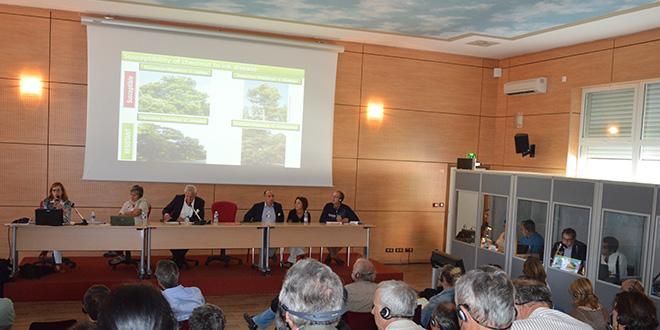 À gauche, Rita Costa, chercheuse de l'Iniav au Portugal, présente les avancées pour la lutte contre la maladie de l'encre à l'occasion des 7e rencontres européennes de la châtaigne à Alès.