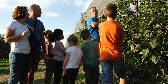 """2e édition des """"Vergers en fête"""" Plus de 1 000 visiteurs dans les vergers des producteurs Blue Whale, les 13 et 14 octobre derniers, en pleine récolte des pommes."""