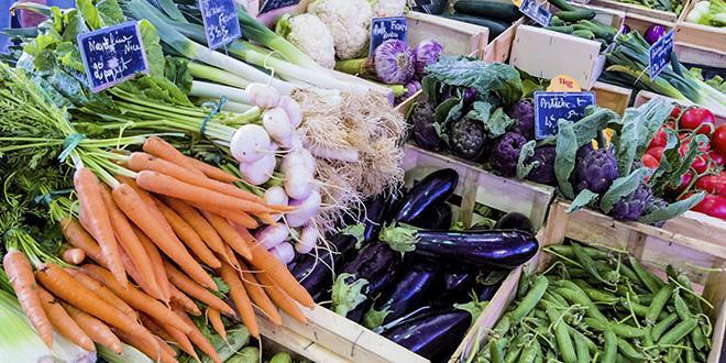 La mise en valeur et la vente des fruits et légumes font partie intégrante de la formation du CAP primeur.