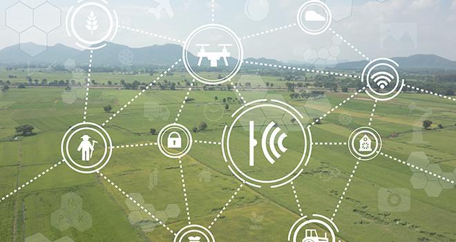 Le virage numérique est engagé dans le secteur agricole et la collecte des données doit peu à peu s'organiser. Photo : ekkasit919/Fotolia