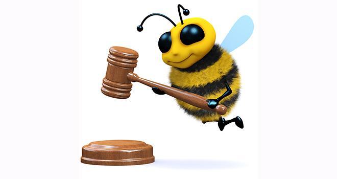 """Projet de modification de l'arrêté """"abeilles"""". Au programme: obligation de réaliser les traitements à la tombée de la nuit en période de floraison."""