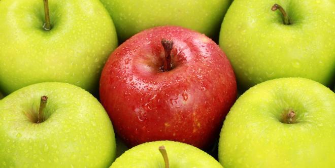Le retard de croissance entraine une augmentation de 5% de la proportion de petits fruits