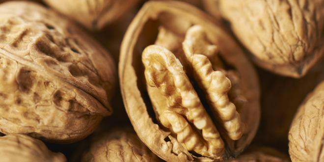 Le marché français de la noix semble s'être conforté et la valeur du produit a gagné en notoriété.
