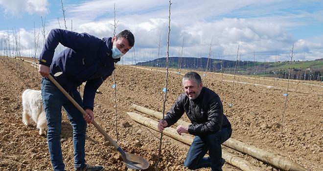 Grégoire Cote, arboriculteur partenaire à Loire-sur-Rhône, participe au programme Sauvez Williams de Blédina. Il est accompagné à sa droite de Markus Sandmayr, directeur général de Blédina. Photo Blédina