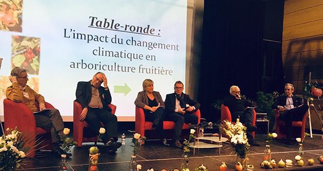 À l'invitation de la FNPF, Jean-Michel Legave (Inra), Alain Vialaret (Blue Whale), Sylvie Ayet (Socaprim), Luc Barbier (FNPF), Michel Issaly (viticulteur) et Stéphane Gin ont débattu des enjeux du réchauffement climatique en arbo. Photo : B.Bosi/ATC