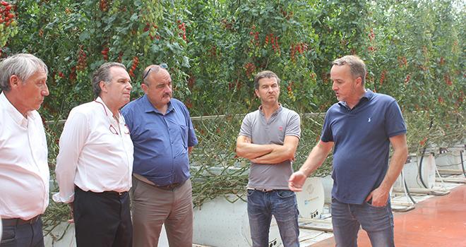 Patrick Lévèque (président de la chambre d'agriculture des Bouches-du-Rhône), Renaud Muselier (président de la Région Sud) et André Bernard (président de la CRA Paca) visitent l'éco-serre de Vincent et Davy Clément. Photo : DR