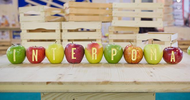Le Salon international Interpoma lance un concours pour mettre en lumière les projets innovants dans la filière pomme. Photo : Interpoma