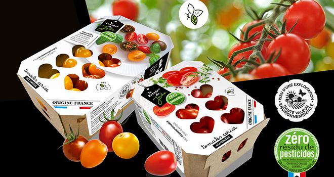 Depuis janvier 2020, Ydeal – Le potager de Jade a choisi de bannir les barquettes en plastique de ses tomates. Photo : Ydeal