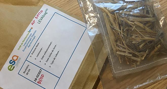 Le LEVAbag mesure la dégradation d'une matière organique de référence mise dans un sac en Nylon. Photo : O.Lévêque/Pixel Image
