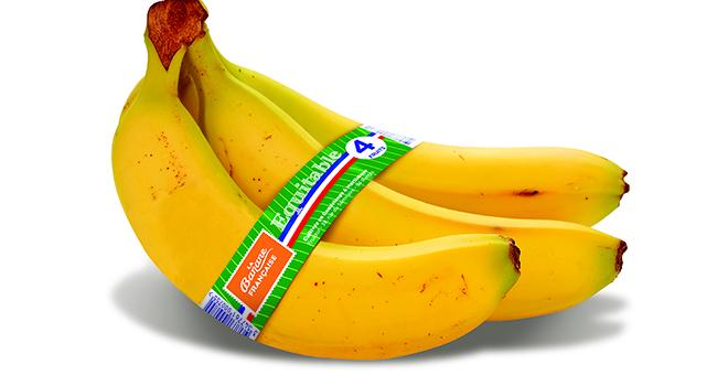 La Banane française équitable débarquera en mai sur les étals. Photo : DR