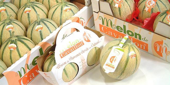 Le Melon de Cavaillon sera facilement repérable dans les étals.