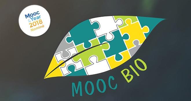 Le MOOC BIO proposera cette année une nouvelle séquence autour du maraîchage bio. Photo : DR