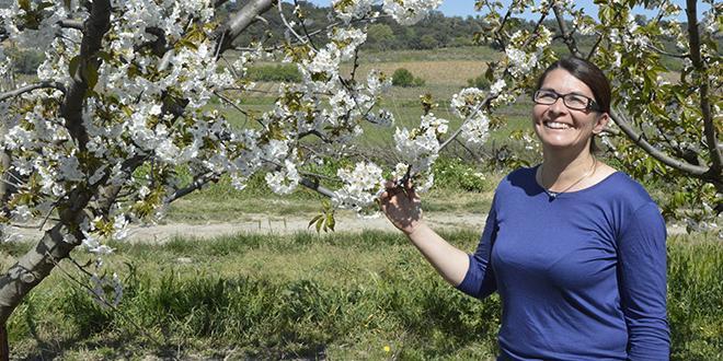 Pour sa campagne de com' 2015, l'AOP cerise de France a choisi quatre productrices pour défendre leur terroir. Sur la photo: Céline Fabre-Galopini, productrice dans le Gard.