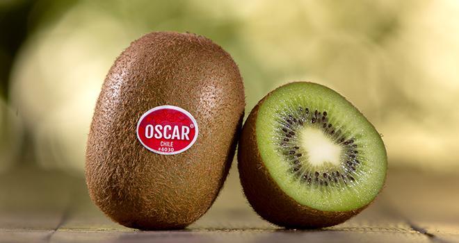 Les kiwis chiliens de la société Primland sont commercialisés sous la marque Oscar. Photo : Primland