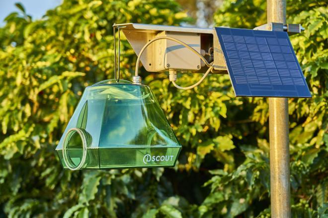 Piège à insectes automatisé iScout de Pessl : ses images haute résolution et données de pression ravageurs soutiendront le service de surveillance et de gestion des ravageurs des fruits à pépins et de la vigne. @BASF