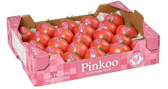 Pinkoo, la tomate ronde rose de Rougeline sera commercialisée cette année. Photo : Les Paysans de Rougeline